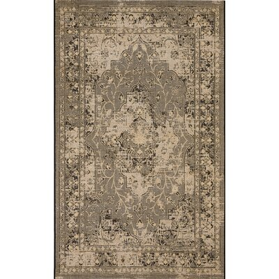 Dixon Black/Cream Area Rug Rug Size: 5 x 8