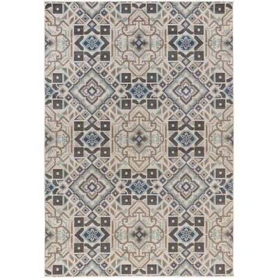 Hasselt Teal/Beige/Charcoal Area Rug Rug Size: Rectangle 54 x 78
