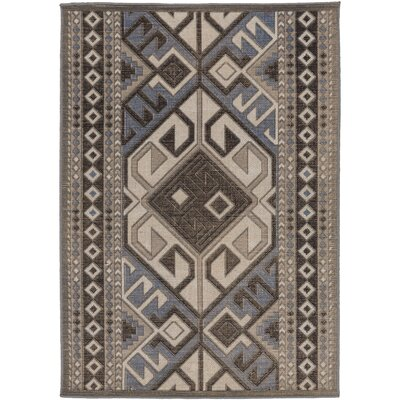 Hasselt Gray Area Rug Rug Size: Rectangle 22 x 4