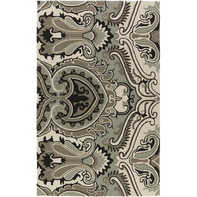 Iona Hand-Hooked Gray Indoor/Outdoor Area Rug Rug Size: 8 x 10