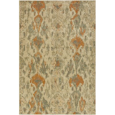 Kerkrade Gray/Beige Area Rug Rug Size: Rectangle 53 x 73