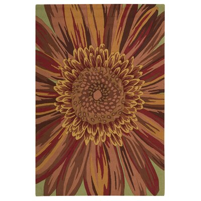 Fiskerikajen Hand-Hooked Chili Area Rug Rug Size: Rectangle 26 x 4