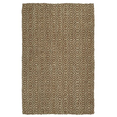 Carolus Hand-Loomed Terracotta Area Rug Rug Size: 8 x 10