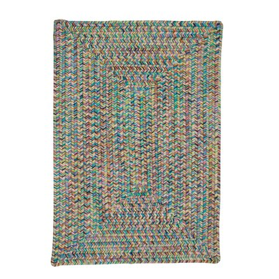 Huntington Area Rug Rug Size: Oval 2 x 8