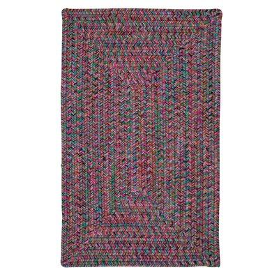 Huntington Hand-Woven Pink/Green Area Rug Rug Size: 10 x 13