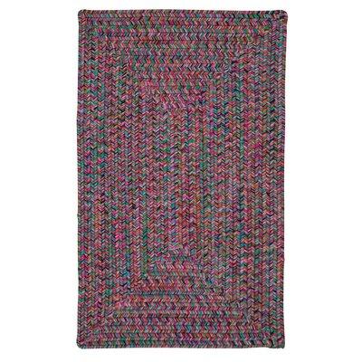 Huntington Hand-Woven Pink/Green Area Rug Rug Size: 12 x 15