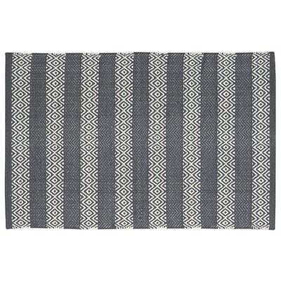 Arapaho Gray Area Rug Rug Size: 2 x 3