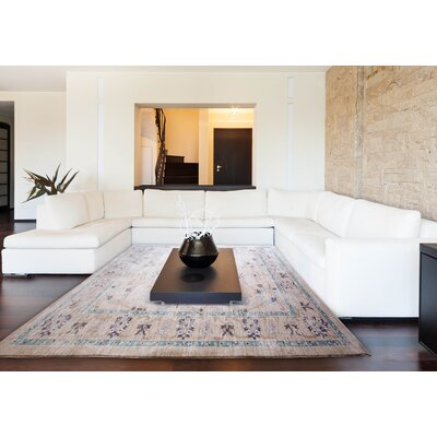 Dondre Beige Area Rug Rug Size: Rectangle 66 x 92