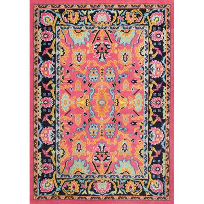 Quaria Pink Area Rug Rug Size: Rectangle 8 x 10