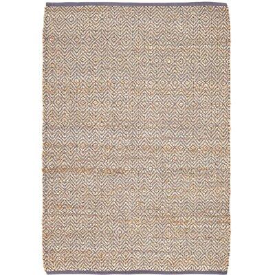 Alameda Hand-Woven Grey / Beige Area Rug Rug Size: 4 x 6