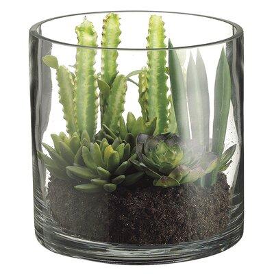 Succulent Garden Faux Florals in Vase (Set of 2)