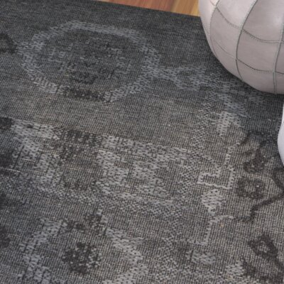 Sanaoubar Black/Grey Area Rug Rug Size: 8 x 11