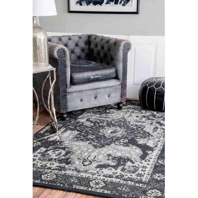 Ayman Charcoal Area Rug Rug Size: 5 x 8