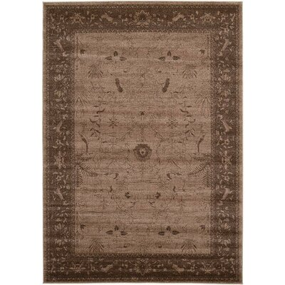Imperial Dark Brown Area Rug Rug Size: 7 x 10