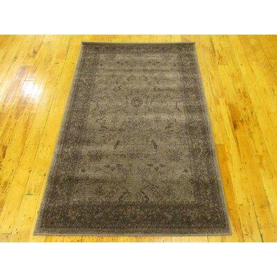 Imperial Dark Brown Area Rug Rug Size: 33 x 53