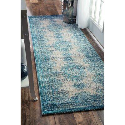 Colmar-Berg Vintage Blue Area Rug Rug Size: Runner 26 x 8