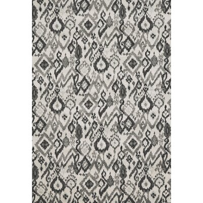 Renzi Area Rug Rug Size: Rectangle 22 x 4