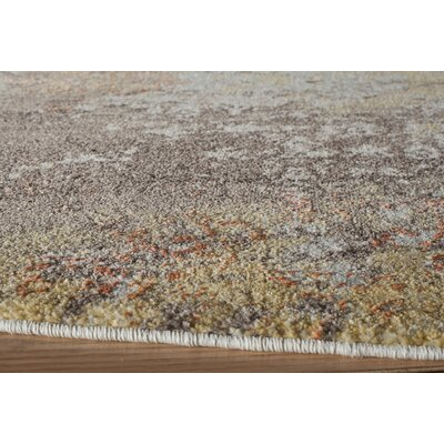 Daisie Rust Area Rug Rug Size: Rectangle 93 x 126
