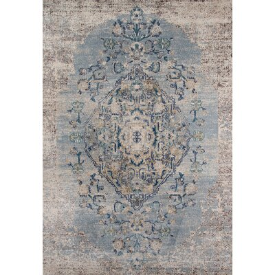 Damien Light Blue/Gray Area Rug Rug Size: Rectangle 53 x 76