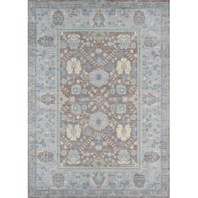 Alicia Dark Gray Area Rug Rug Size: 5 x 8