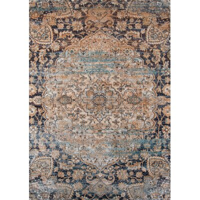 Salena Blue/Brown Area Rug Rug Size: 53 x 76