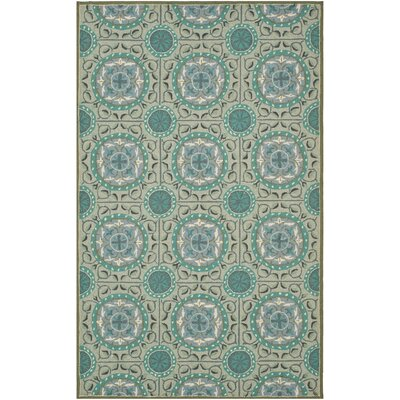 Mackenzie Mint/Aqua Outdoor Area Rug Rug Size: Rectangle 36 x 56
