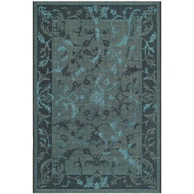 Mahmoud Black and Turquoise Area Rug Rug Size: 4 x 6