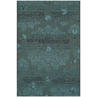 Port Laguerre Velvety Black/Turquoise Area Rug Rug Size: 4 x 6