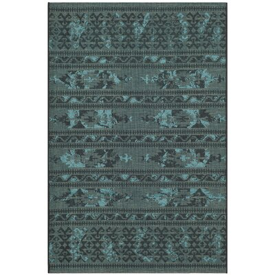 Port Laguerre Black & Turquoise Velvety Area Rug Rug Size: Rectangle 4 x 6