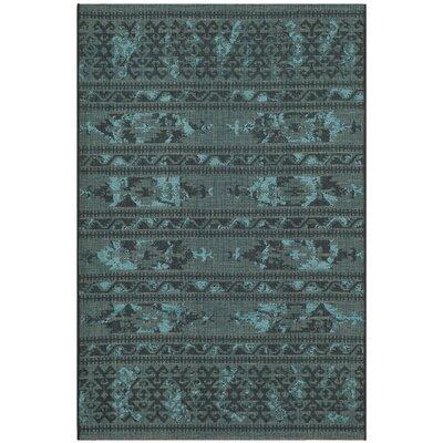 Port Laguerre Black & Turquoise Velvety Area Rug Rug Size: 4 x 6