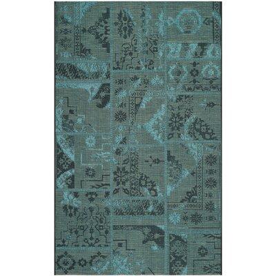 Port Laguerre Black/Turquoise Velvety Area Rug Rug Size: 5 x 8
