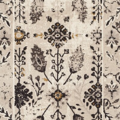 Zennia Creme / Brown Area Rug Rug Size: Rectangle 4 x 6