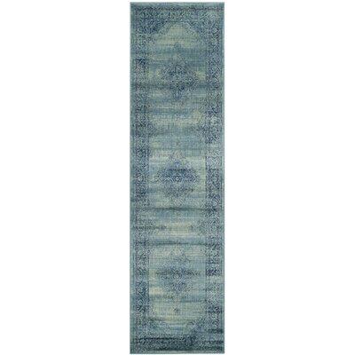 Vishnu Turquoise Area Rug Rug Size: Runner 22 x 12