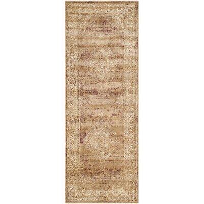 Vishnu Taupe Outdoor Rug Rug Size: Runner 22 x 10