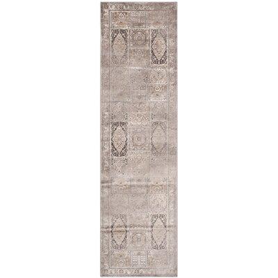 Vishnu Mouse Outdoor Rug Rug Size: Runner 25 x 76