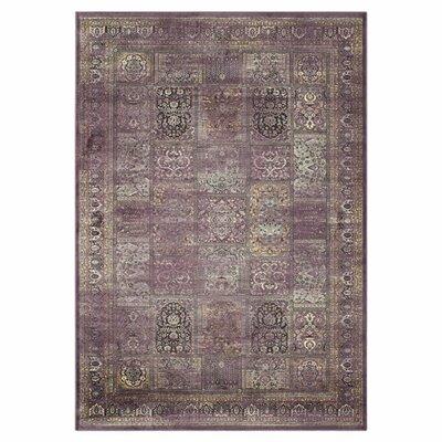 Vishnu Purple Rug Rug Size: 67 x 92