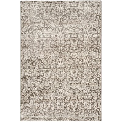 Vishnu Brown / Cream Area Rug Rug Size: 51 x 77