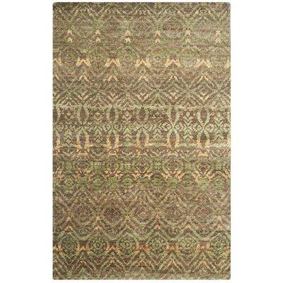 Pinehurst Green/Brown Area Rug Rug Size: 5 x 8