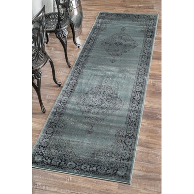 Pittwater Blue Area Rug Rug Size: Runner 27 x 8