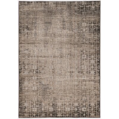 Pasho Beige/Gray Area Rug Rug Size: Rectangle 8 x 104