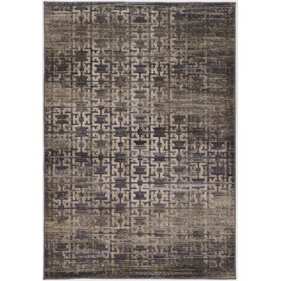 Pasho Beige/Black Area Rug Rug Size: Rectangle 5 x 76