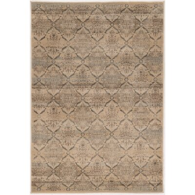 Pasho Beige Area Rug Rug Size: Rectangle 8 x 104