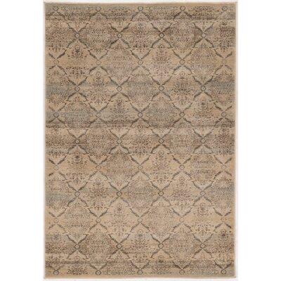 Pasho Beige/Gray Area Rug Rug Size: 8 x 104