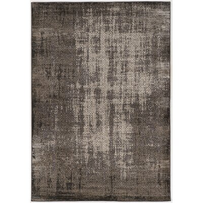 Pasho Black Area Rug Rug Size: Rectangle 8 x 104