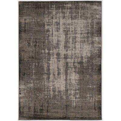 Pasho Gray Area Rug Rug Size: 8 x 104