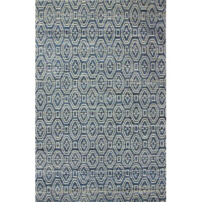 Amira Hand-Woven Blue Area Rug Rug Size: 76 x 96