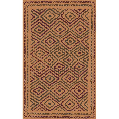 Sala Burnt Orange Area Rug Rug Size: 5 x 8