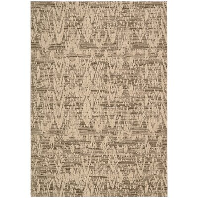 Shaima Mocha Area Rug Rug Size: Rectangle 53 x 75