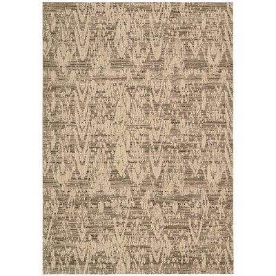 Shaima Mocha Area Rug Rug Size: 53 x 75
