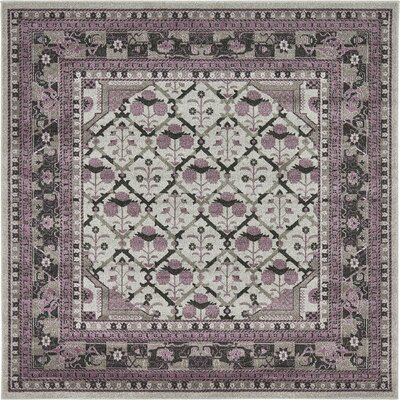 Fasano Gray Area Rug Rug Size: Square 8